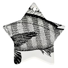 Animal Fish Ocean Sea Star Ornament (two Sides)