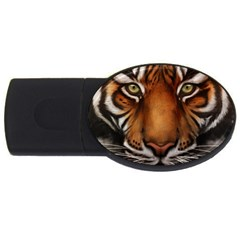 The Tiger Face Usb Flash Drive Oval (4 Gb) by Nexatart