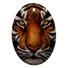 The Tiger Face Oval Ornament (two Sides)