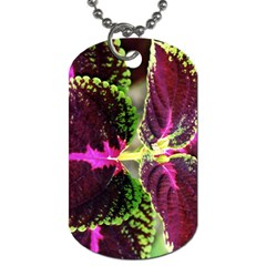 Plant Purple Green Leaves Garden Dog Tag (two Sides)