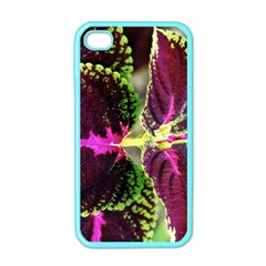 Plant Purple Green Leaves Garden Apple Iphone 4 Case (color)