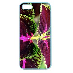 Plant Purple Green Leaves Garden Apple Seamless Iphone 5 Case (color) by Nexatart