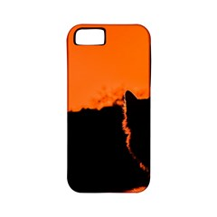 Sunset Cat Shadows Silhouettes Apple Iphone 5 Classic Hardshell Case (pc+silicone)
