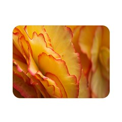 Flowers Leaves Leaf Floral Summer Double Sided Flano Blanket (mini)  by Nexatart