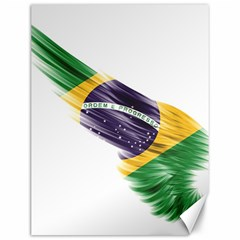 Flag Of Brazil Canvas 12  X 16   by Sapixe