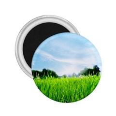 Green Landscape, Green Grass Close Up Blue Sky And White Clouds 2 25  Magnets