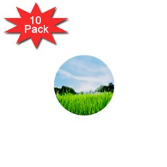 Green Landscape, Green Grass Close Up Blue Sky And White Clouds 1  Mini Buttons (10 Pack)