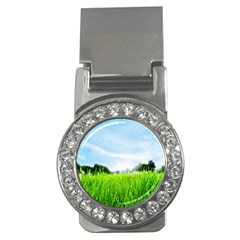 Green Landscape, Green Grass Close Up Blue Sky And White Clouds Money Clips (cz)