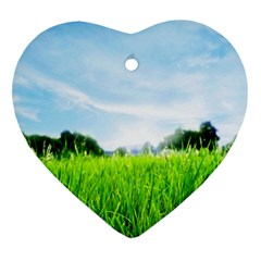 Green Landscape, Green Grass Close Up Blue Sky And White Clouds Heart Ornament (two Sides)