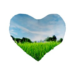 Green Landscape, Green Grass Close Up Blue Sky And White Clouds Standard 16  Premium Flano Heart Shape Cushions
