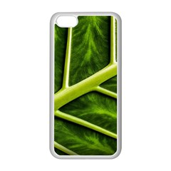 Leaf Dark Green Apple Iphone 5c Seamless Case (white) by Sapixe