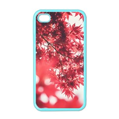 Maple Leaves Red Autumn Fall Apple Iphone 4 Case (color)
