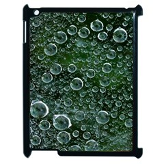 Morning Dew Apple Ipad 2 Case (black) by Sapixe