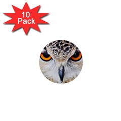 Owl Face 1  Mini Buttons (10 Pack)