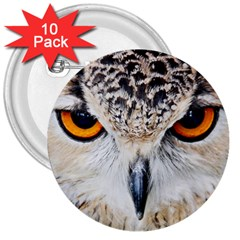 Owl Face 3  Buttons (10 Pack)