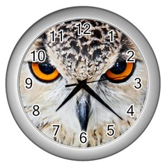 Owl Face Wall Clocks (silver)  by Sapixe