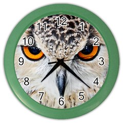 Owl Face Color Wall Clocks by Sapixe