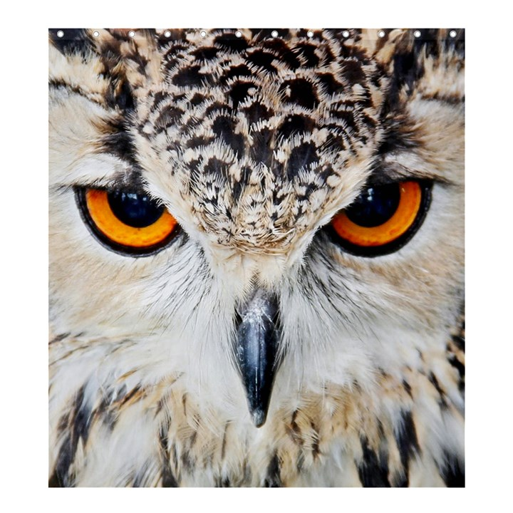 Owl Face Shower Curtain 66  x 72  (Large)