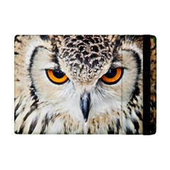 Owl Face Apple Ipad Mini Flip Case