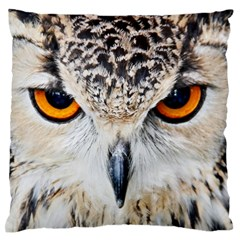 Owl Face Large Flano Cushion Case (one Side)
