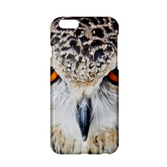 Owl Face Apple Iphone 6/6s Hardshell Case