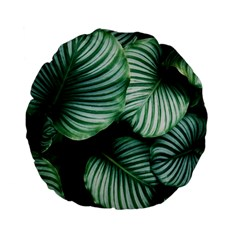 Tropical Florals Standard 15  Premium Flano Round Cushions by goljakoff