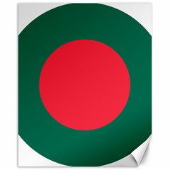 Roundel Of Bangladesh Air Force Canvas 16  X 20   by abbeyz71
