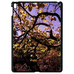 Highland Park 9 Apple Ipad Pro 9 7   Black Seamless Case by bestdesignintheworld