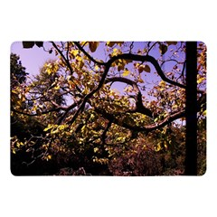 Highland Park 9 Apple Ipad Pro 10 5   Flip Case by bestdesignintheworld