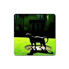 Guard 3 Square Magnet by bestdesignintheworld