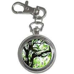 Lake Park 6 Key Chain Watches by bestdesignintheworld