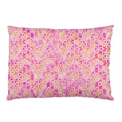 Flower Of Life Paint Pattern 9 Pillow Case (two Sides) by Cveti