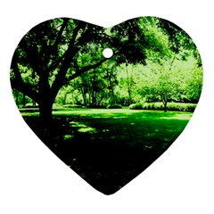 Lake Park 14 Ornament (heart) by bestdesignintheworld