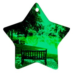 Lake Park 20 Star Ornament (two Sides) by bestdesignintheworld