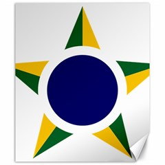 Roundel Of Brazilian Air Force Canvas 20  X 24   by abbeyz71