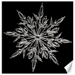 Ice Crystal Ice Form Frost Fabric Canvas 12  X 12   by Sapixe