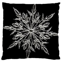 Ice Crystal Ice Form Frost Fabric Large Cushion Case (two Sides)