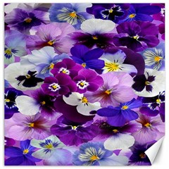 Graphic Background Pansy Easter Canvas 12  X 12