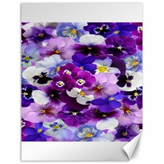 Graphic Background Pansy Easter Canvas 18  X 24   by Sapixe