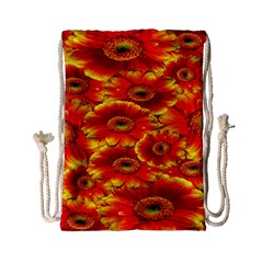 Gerbera Flowers Nature Plant Drawstring Bag (small)