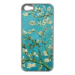 Almond Blossom  Apple Iphone 5 Case (silver)