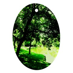 Lake Park 17 Ornament (oval) by bestdesignintheworld