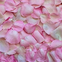 Romantic Pink Rose Petals Floral  Canvas 12  X 12   by yoursparklingshop