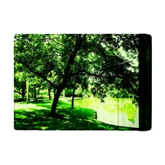 Lake Park 17 Ipad Mini 2 Flip Cases