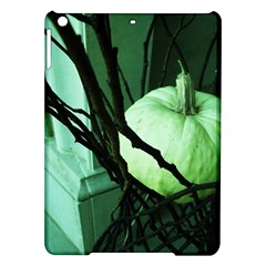 Pumpkin 7 Ipad Air Hardshell Cases