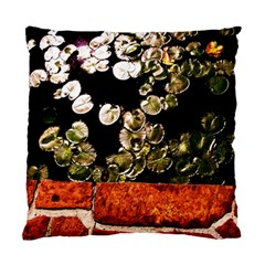 Highland Park 4 Standard Cushion Case (two Sides) by bestdesignintheworld
