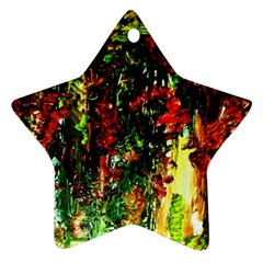 Resort Star Ornament (two Sides) by bestdesignintheworld