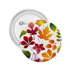 Beautiful Autumn Leaves Vector 2 25  Buttons