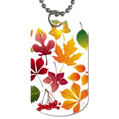 Beautiful Autumn Leaves Vector Dog Tag (two Sides)