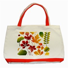Beautiful Autumn Leaves Vector Classic Tote Bag (red) by Nexatart